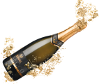 champagne_PNG17475.png