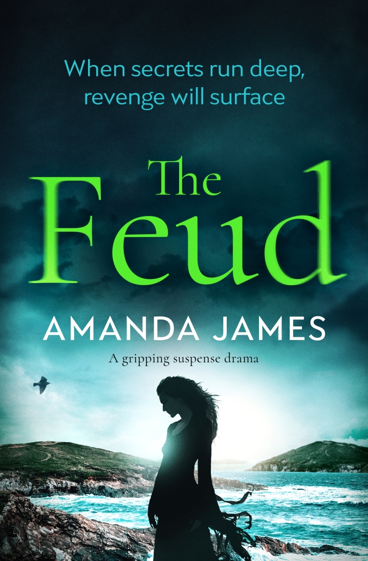 Amanda James - The Feud_cover_high res.jpg